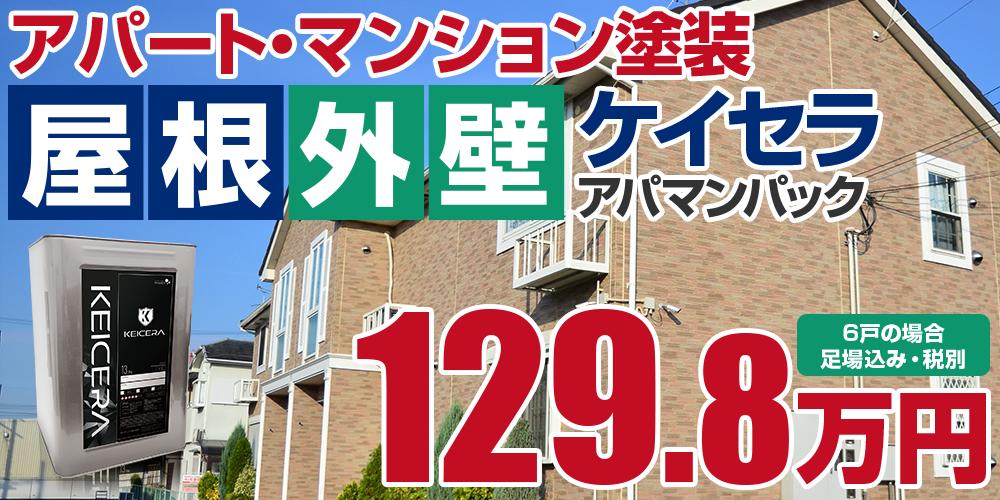 ケイセラアパマンパック塗装 129.8万円