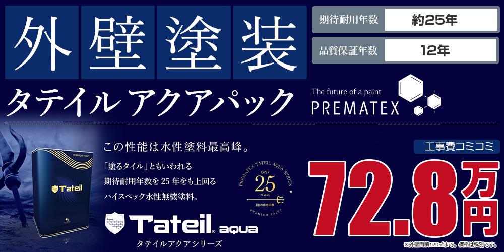 タテイルアクアパック塗装 72.8万円