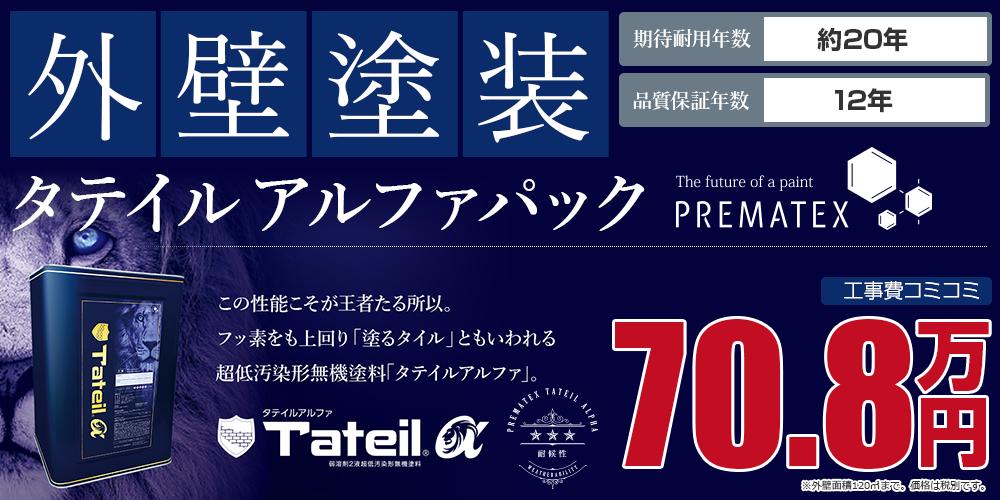 タテイルアルファパック塗装 70.8万円