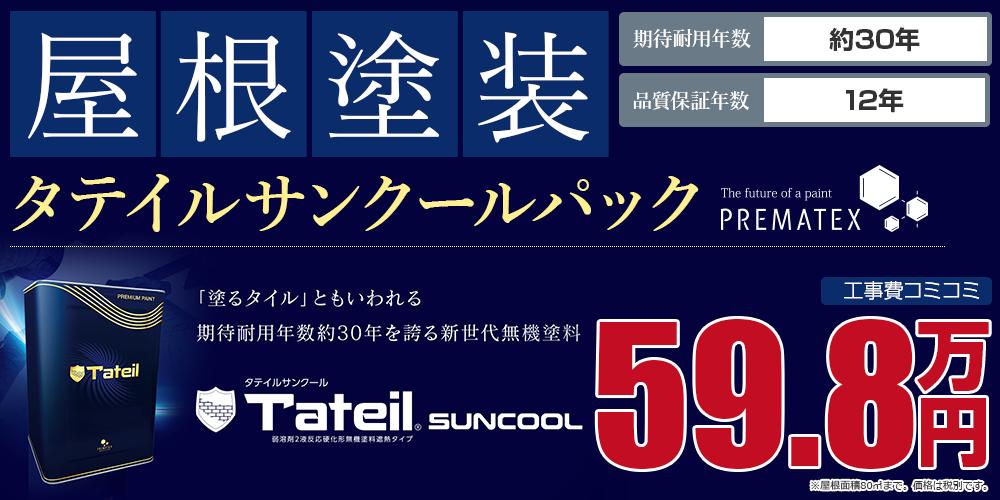 タテイルサンクールパック塗装 59.8万円