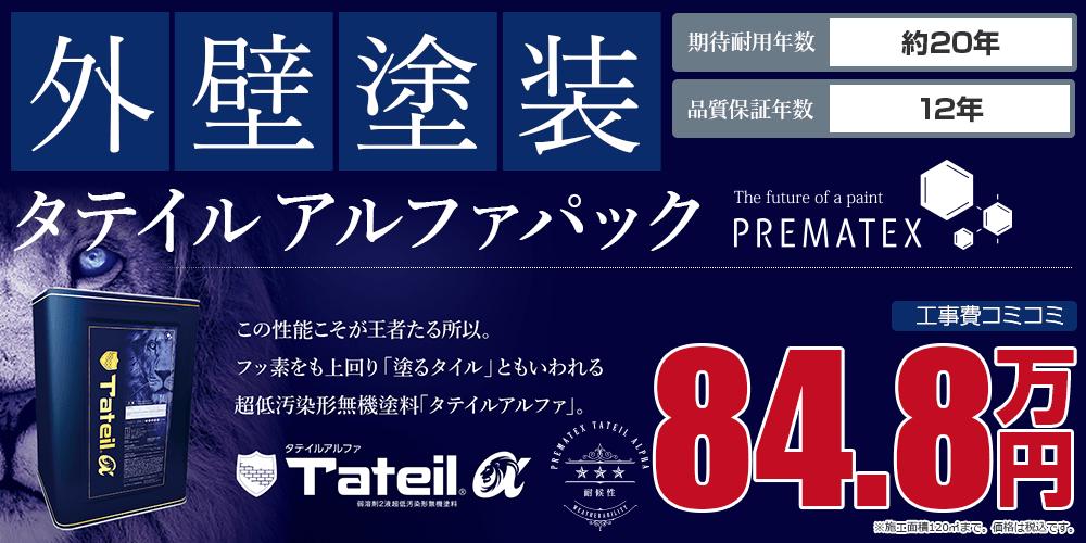タテイルアルファパック塗装 84.8万円