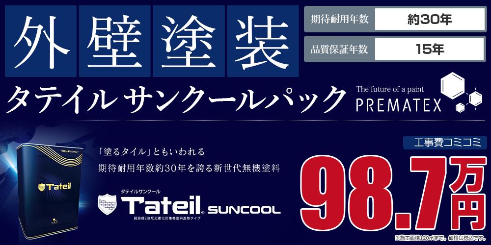 タテイルサンクールパック塗装 98.7万円