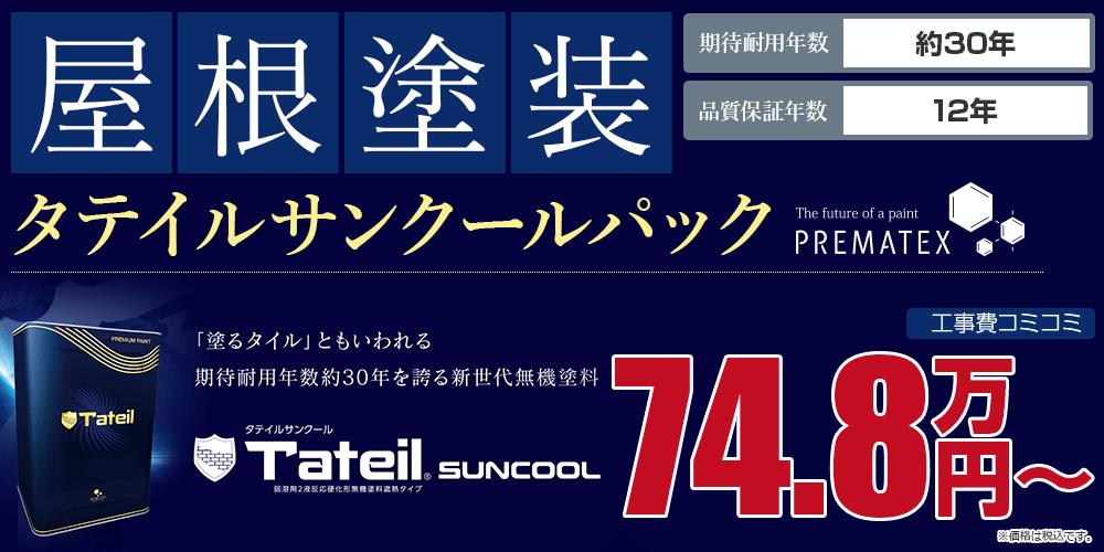 タテイルサンクールパック塗装 74.8万円