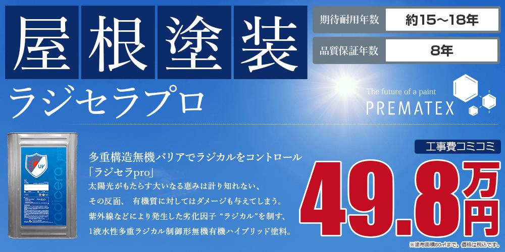 ラジセラプロパック塗装 49.8万円